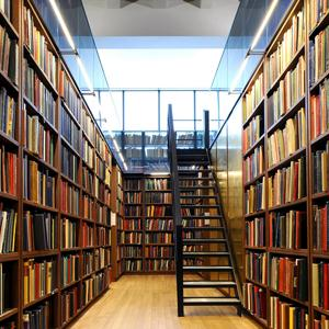 Библиотеки Известкового