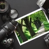 Фотоуслуги в Известковом